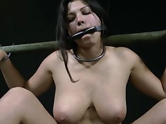 Fastened up beauty waits with anticipation of her next punishment